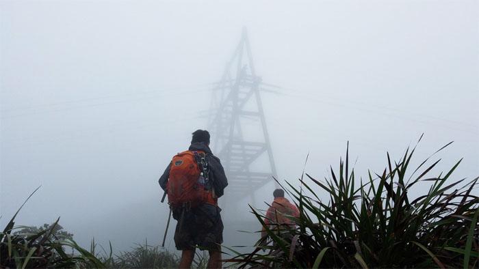 Aiea Ridge Trail