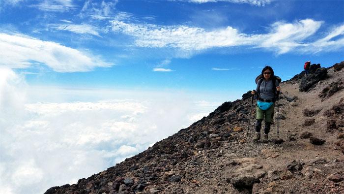 Fuji Summit