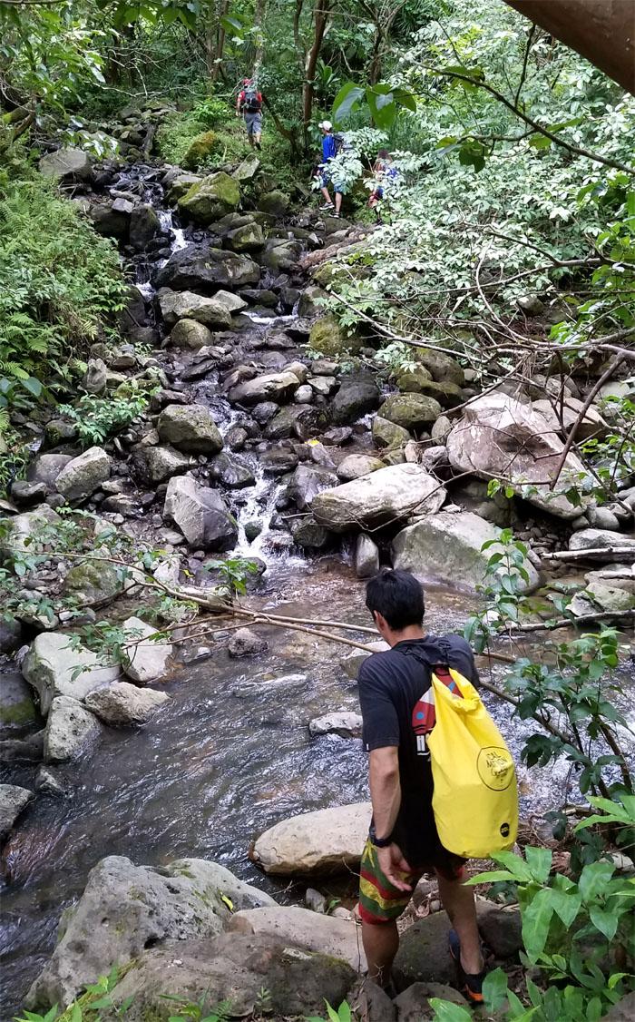Upper Makamakaole Falls