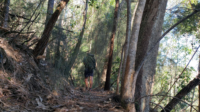 Honouliuli Contour Trail