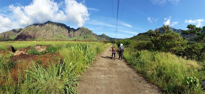 Waianae-Ka'ala Trail