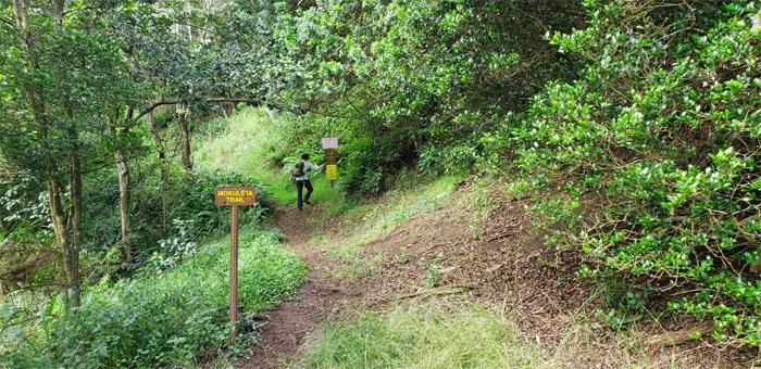 Mokuleia Trail