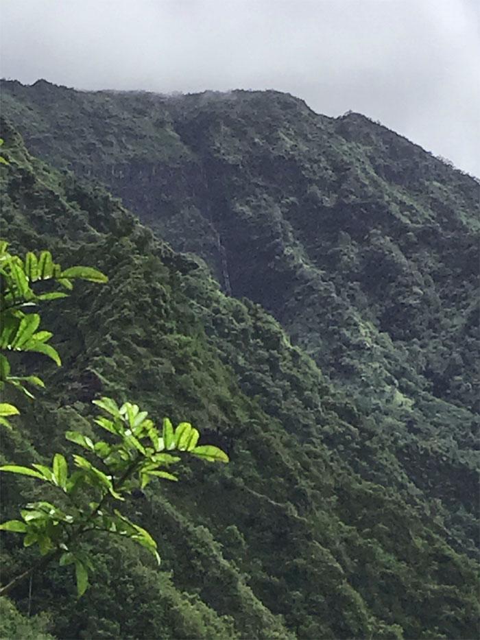 Pueo Falls
