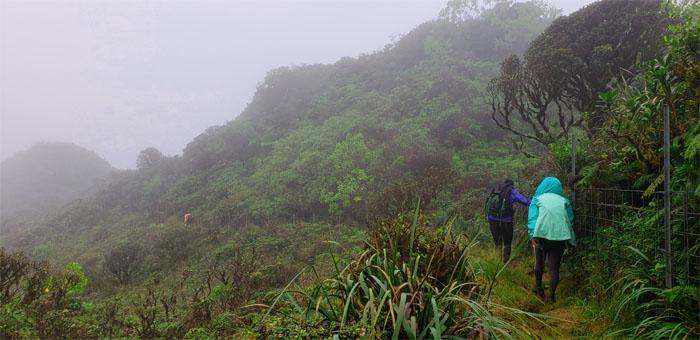 Papali Ridge
