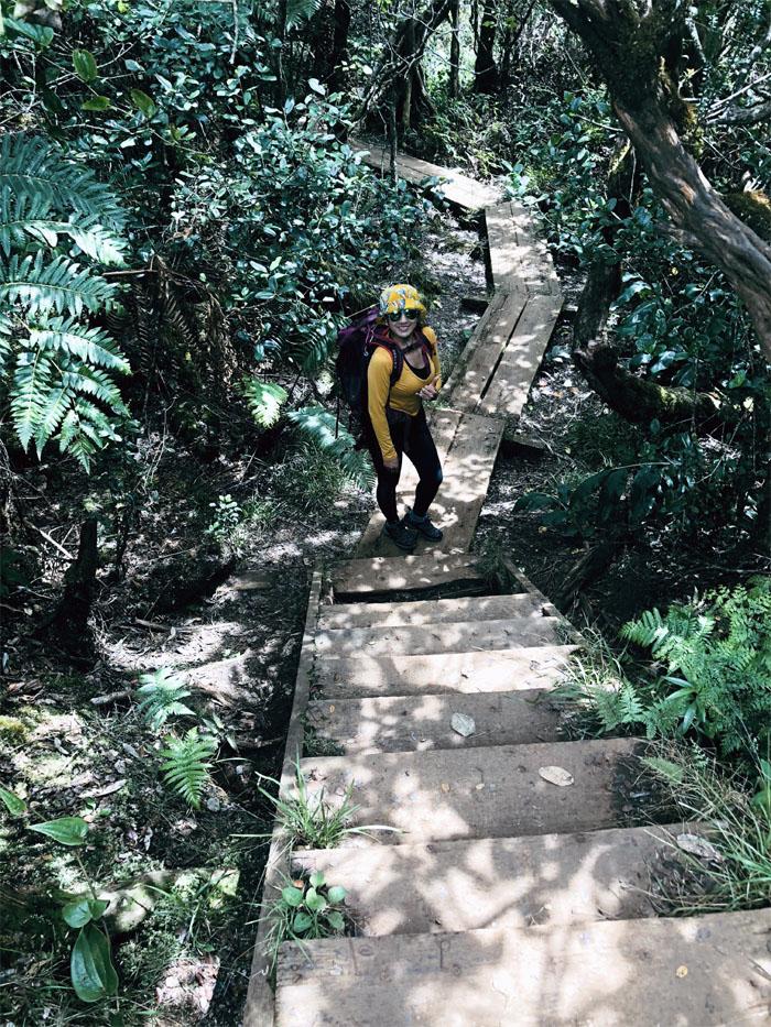 Alakai Swamp Trail