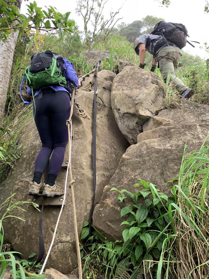 Waianae Ka'ala Trail
