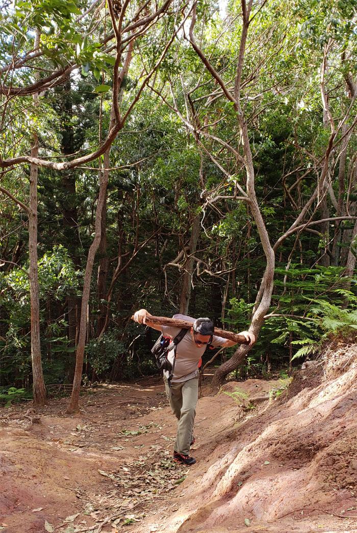 Kuli'ou'ou Ridge Trail