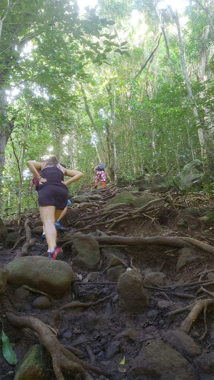Wailua Trail