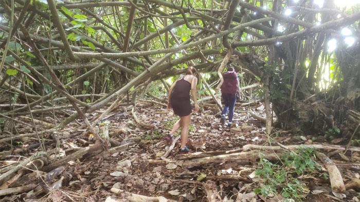 Opaeka'a Trail