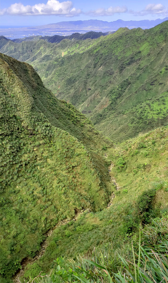 Moanalua Stream