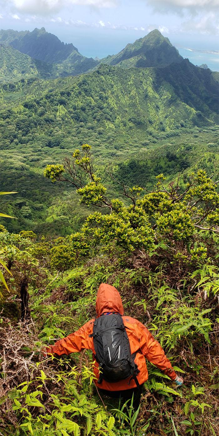 Pauao Ridge