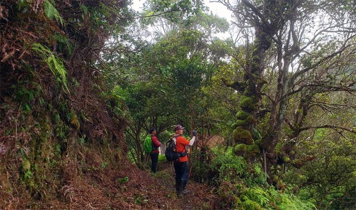 S-W Trail