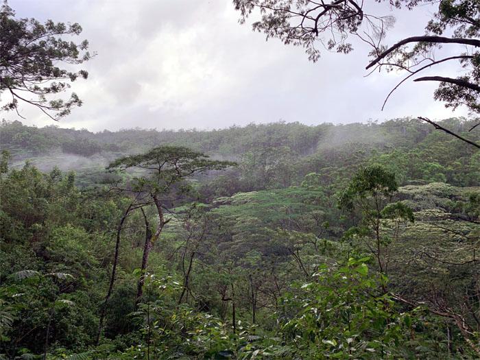 Ewa Reserve