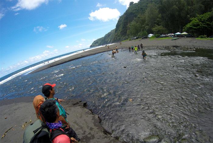 Wailoa Stream