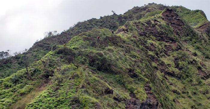 Moanalua Saddle West