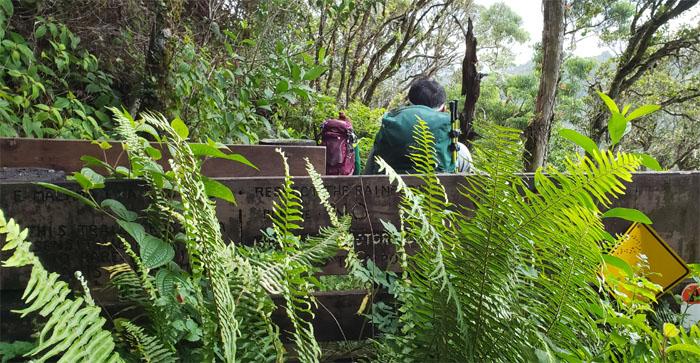 Poamoho Trail