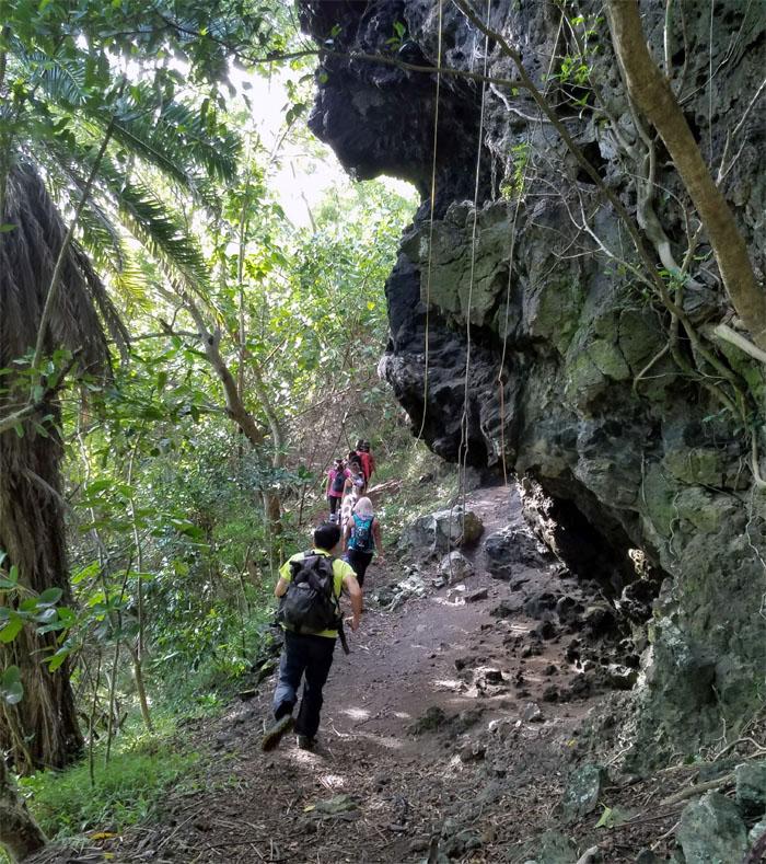 Ma'uka Trail