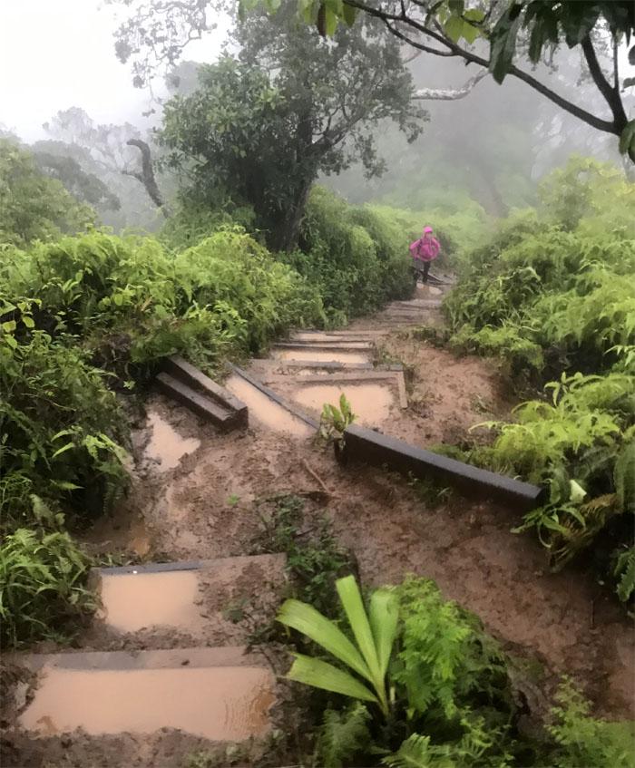 Kuli'ou'ou Trail