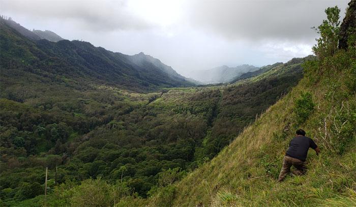 Kalihi Valley