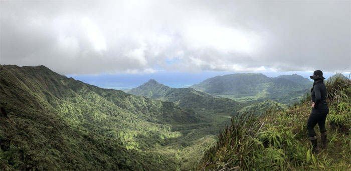Ko'olau Summit Trail (KST)