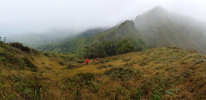 Waiahole