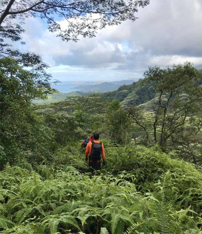 Waiahole Uka