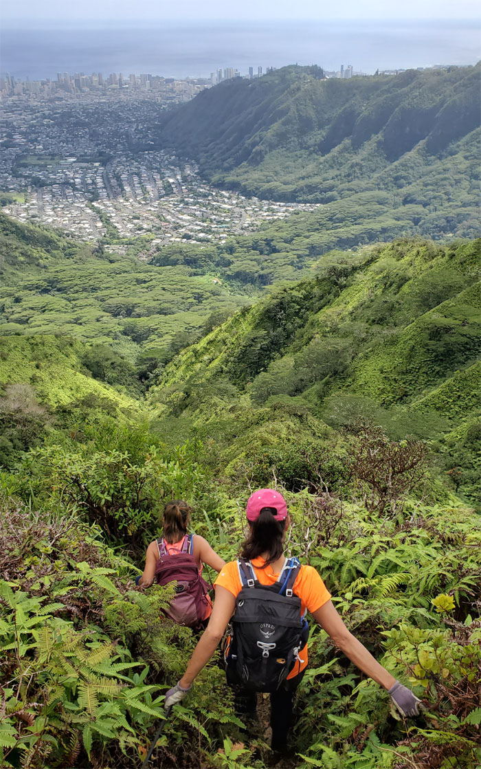 Manoa Middle Trail