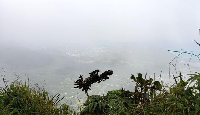 Hawaii Loa Summit