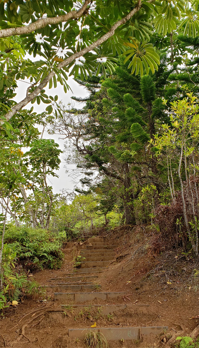 Kuli'ou'ou Ridge Trail