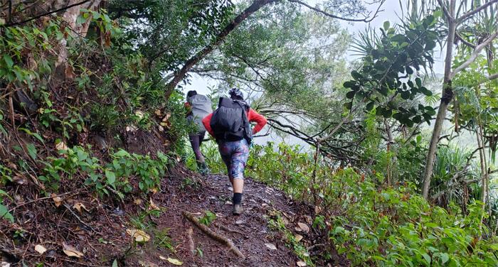 Papali Trail