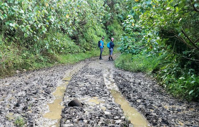 Kamananui Valley Trail