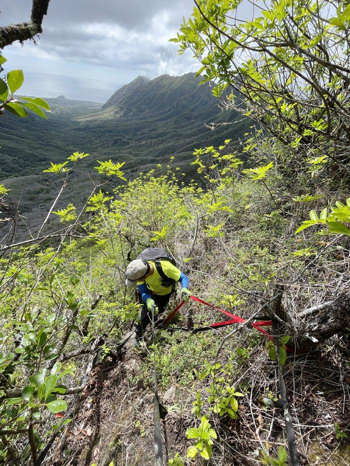 King Kong Ridge
