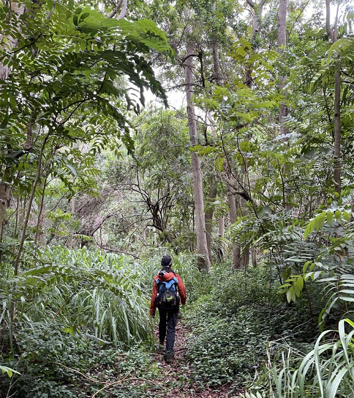 Kolekole Trail