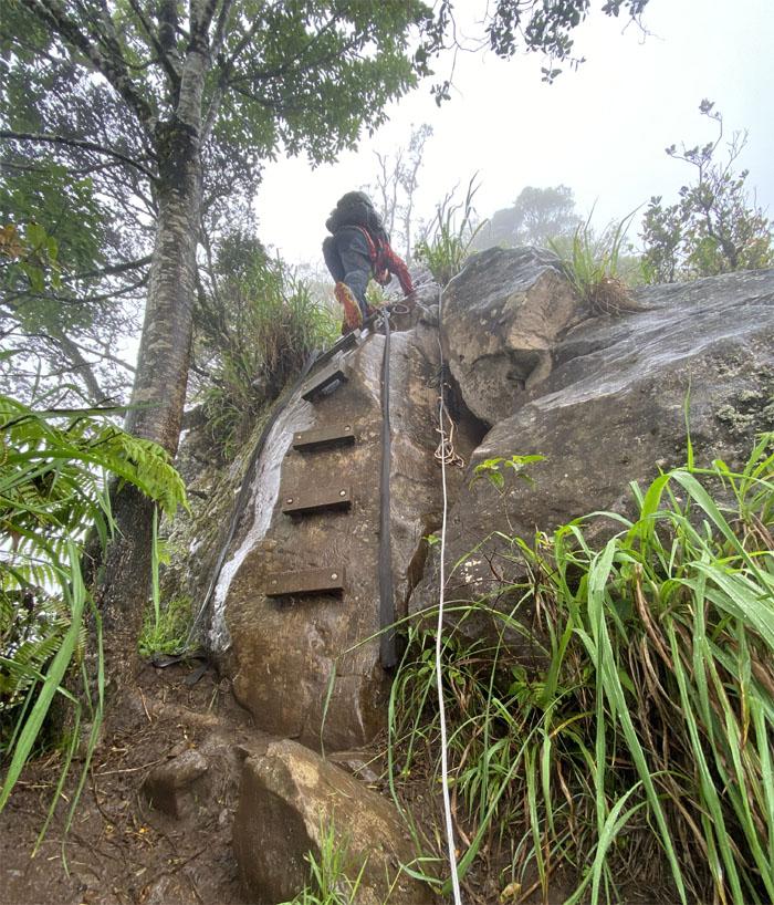 Ka'ala Trail