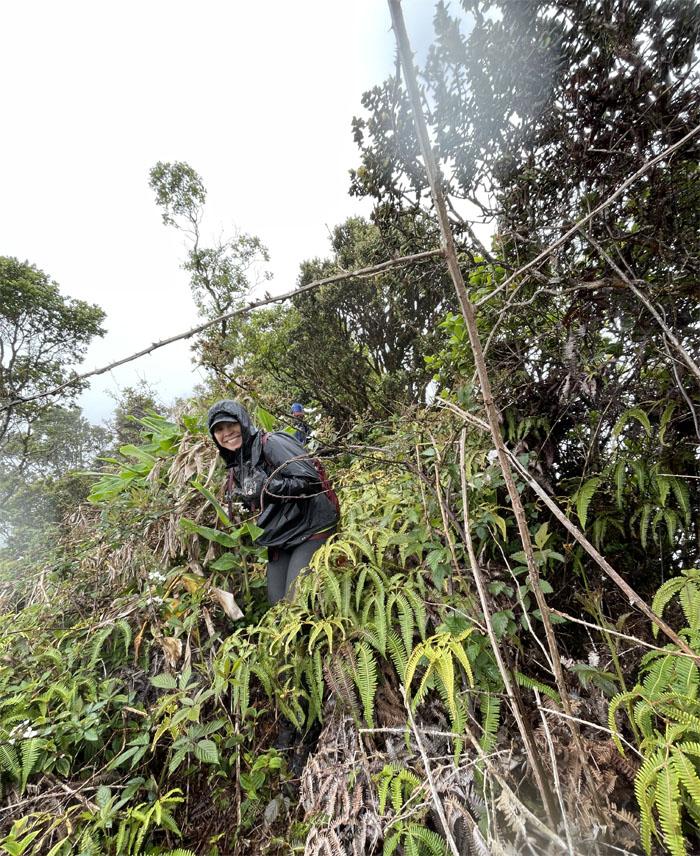 Waianae Summit Trail (WST)