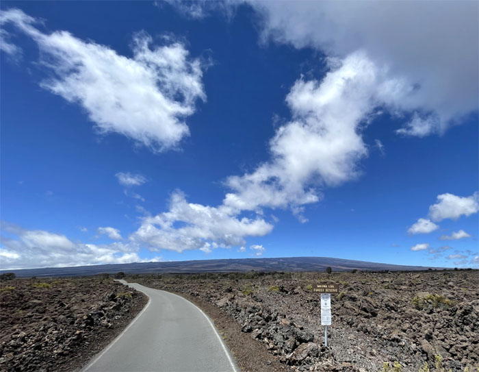 Mauna Kea Forest Reserve