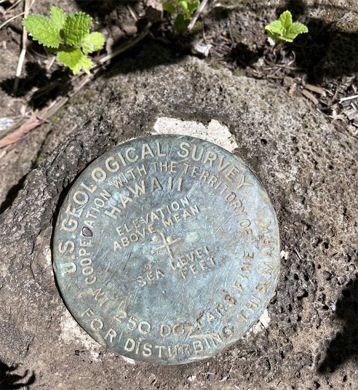 Geodetic Marker