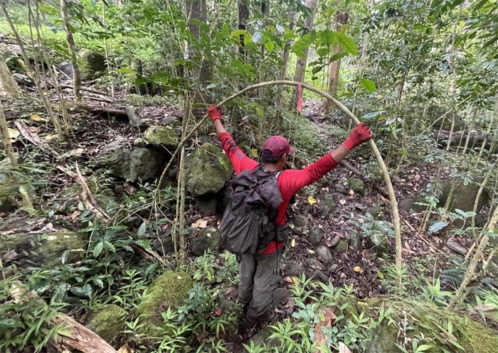 Kaua Trail