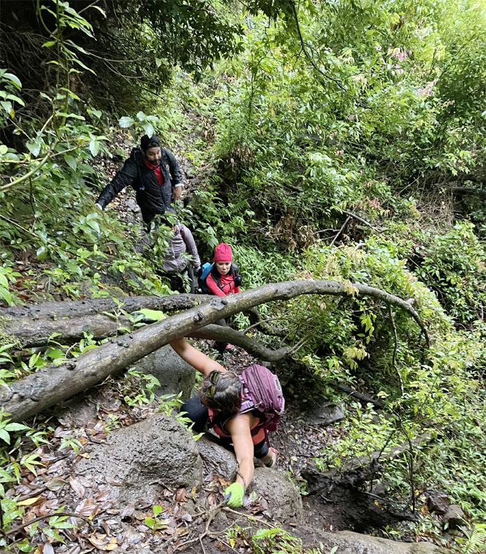Ko'olau Summit Ridge Trail (KSRT)